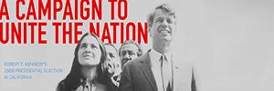 Unite the Nation Campaign Exhibit Button