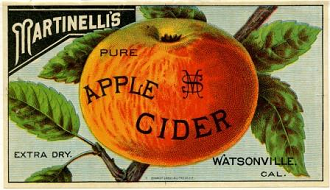this is a label for Martinelli's pure apple cider, although the apple looks decidedly orange. the name martinelli's appears in white lettering on a black background in the upper left, while the apple is centered on the label with the words pure apple cider in black lettering overlaying it. to either side of the apple are green leaves on a branch. across the bottom of the label are the words extra dry and watsonville, california